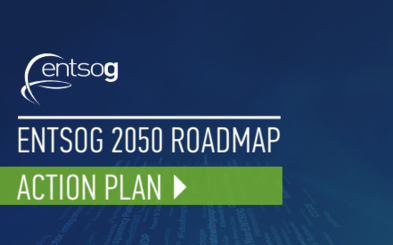 Roadmap Action Plan